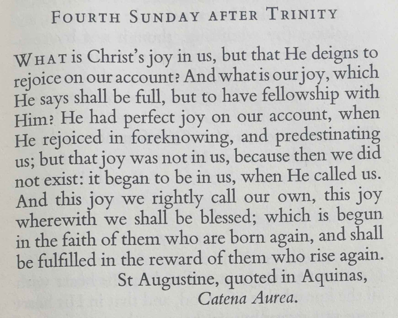 Fourth Sunday after Trinity (July 9th  2017)