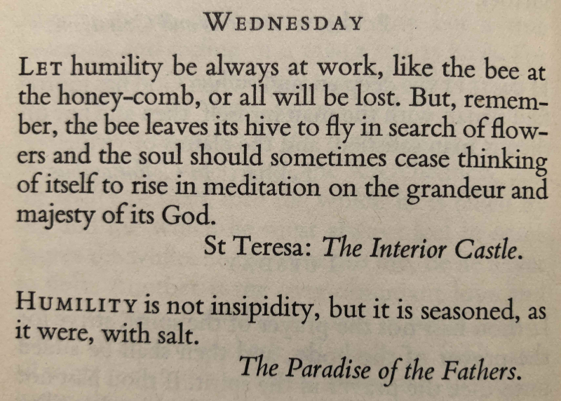 21st Wednesday after Trinity (November 1st  2017)